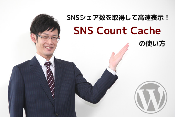 SNS Count Cache の使い方