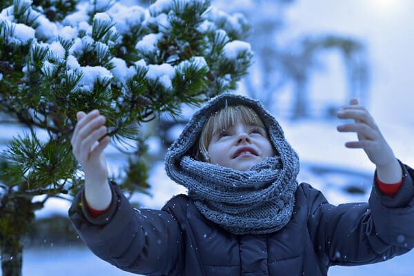 ブログに雪を降らせる方法