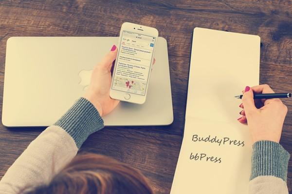 BuddyPress & bbPress