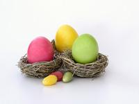 デザインの卵